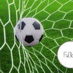 80 слов и выражений на немецком языке по футбольной теме
